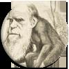 Idée reçue : Darwin a inventé la théorie de l'évolution