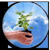 """<strong><span style='font-size:144%'> <a href=""""http://www.vulgarisation-scientifique.com/wiki/Pages.Les plantes filles de l air"""" style=""""color: black;"""" >Les plantes, filles de l'air ? </a> </span></strong> <br clear='all' /><br clear='all' />D'où les plantes tirent-elles la matière qui leur permet de grandir ? <br clear='all' />                                  <a href=""""http://www.vulgarisation-scientifique.com/wiki/Pages.Les plantes filles de l air"""" style=""""color: black;font-weight: bold;"""" > Lire l'article</a>"""