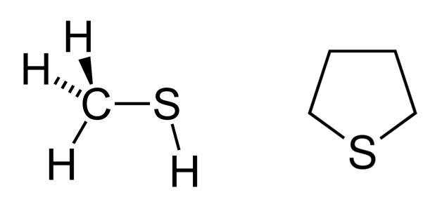 Méthylmercaptan et tétrohydrothiophène